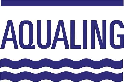Aqualing Bestway konténer